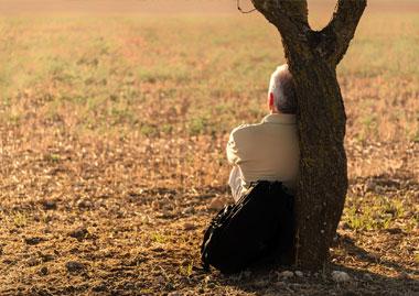 Overvejelser omkring begravelsen/bisættelsen